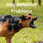Dog behavioral problem training